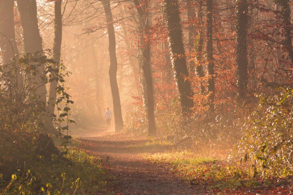 Waldbaden_Herbst