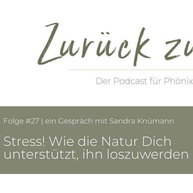 Phoenixfrau_Podcast_s_q_tiny