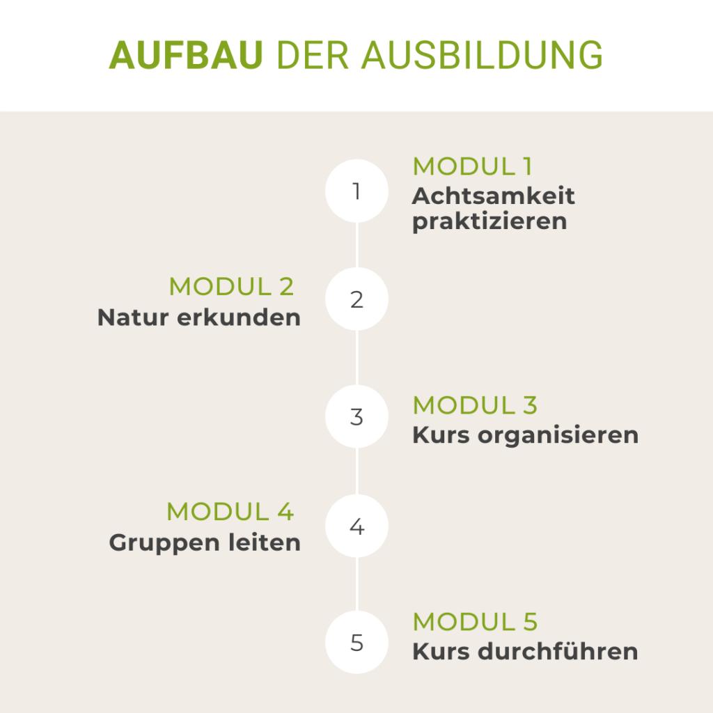 Die 5 Module der Ausbildung zur Natur-Achtsamkeitstrainerin